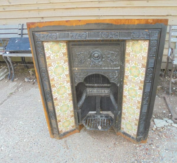 decorative fire insert
