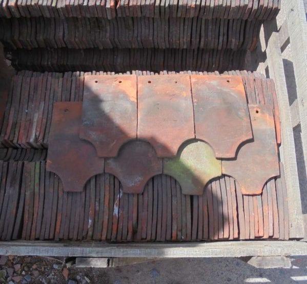 fish tail tile