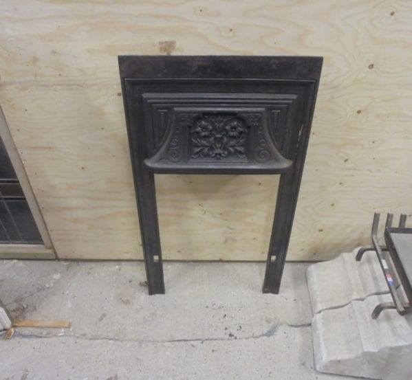 Small Black Fire Insert