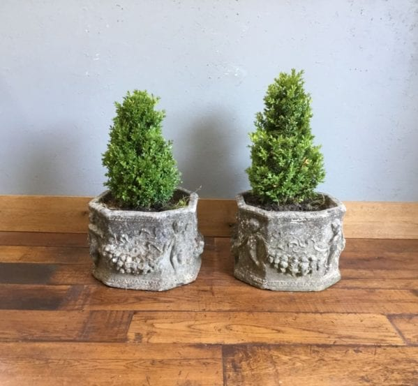 8 Sided Stone Planter & Tree Pair
