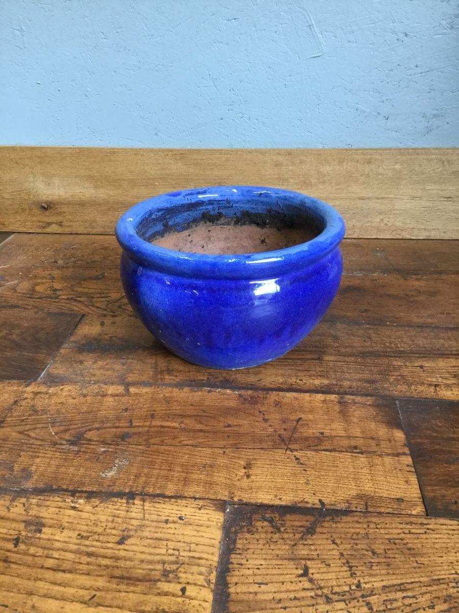 Low Wide Blue Pot