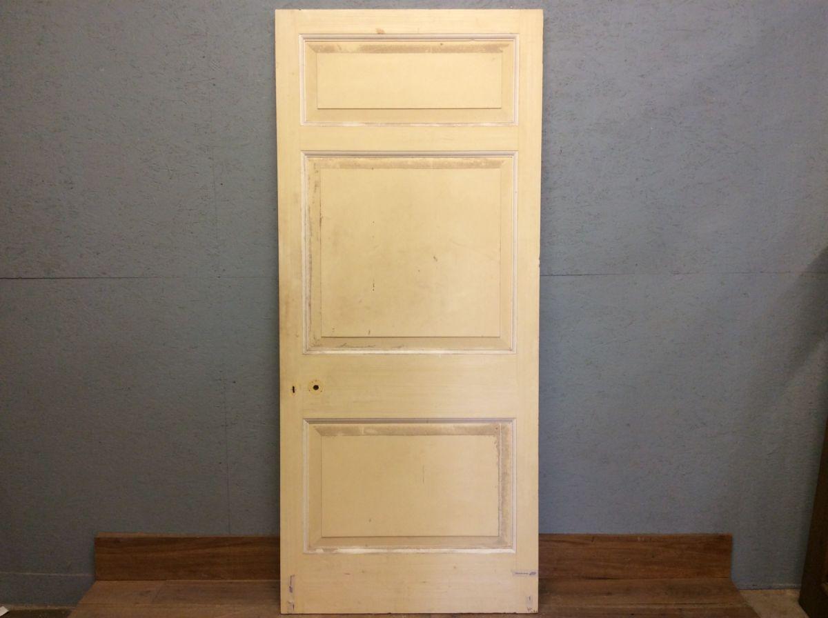 Big 3 Panel Door