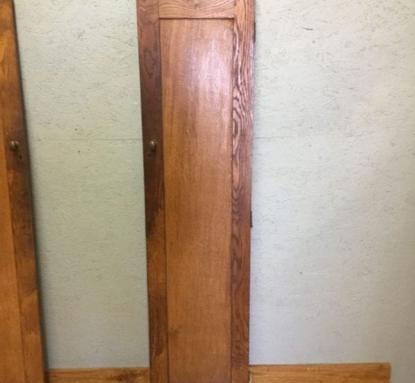 Reclaimed Narrow Cupboard Door
