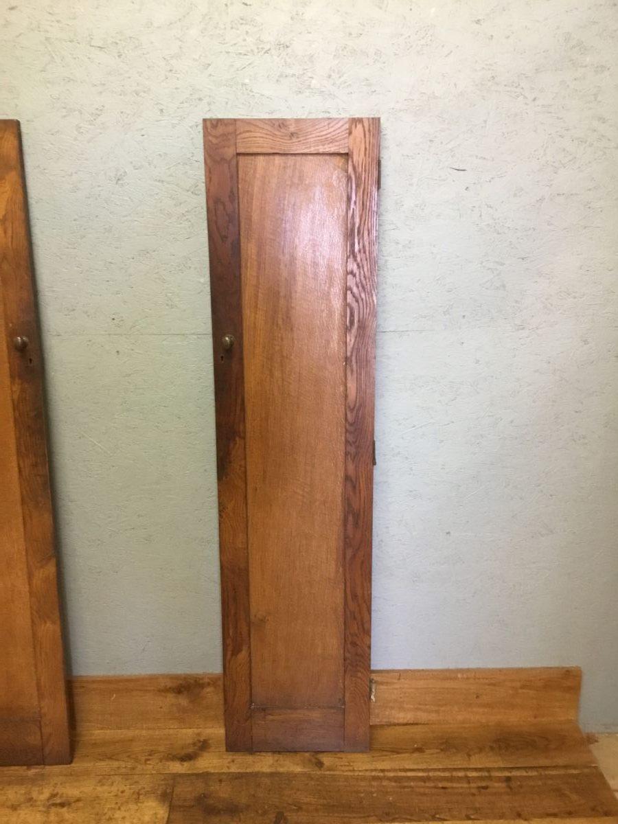 Reclaimed Narrow Cupboard Door