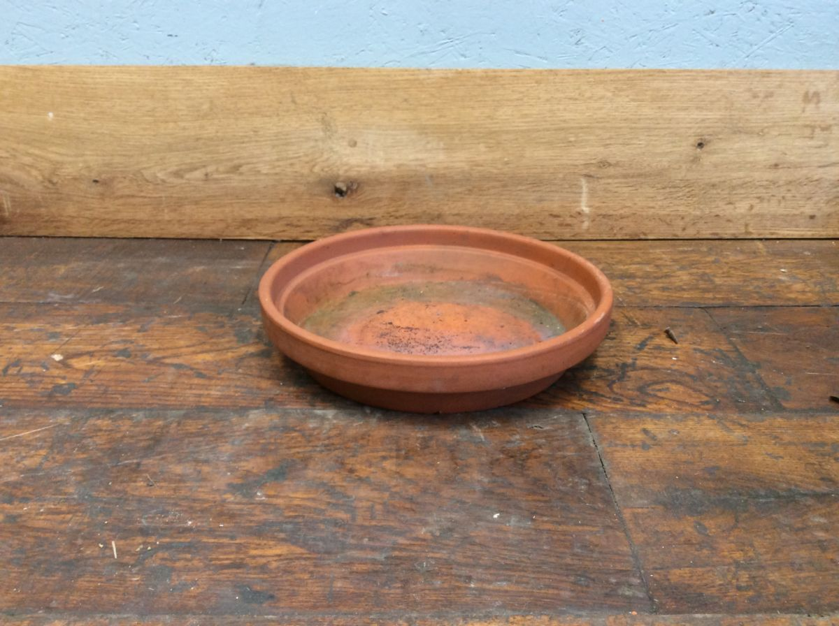 Terracotta Plant Pot Dish
