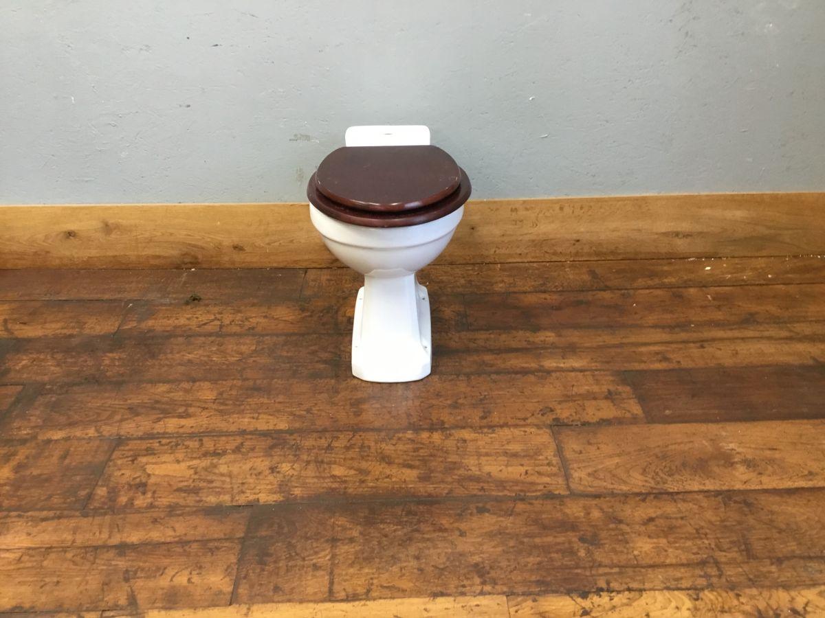 Reclaimed Dark Seated Toilet