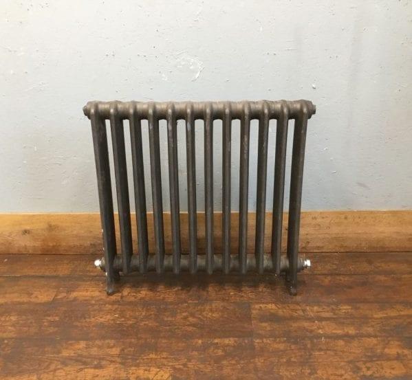 12 Section Single Column Radiator