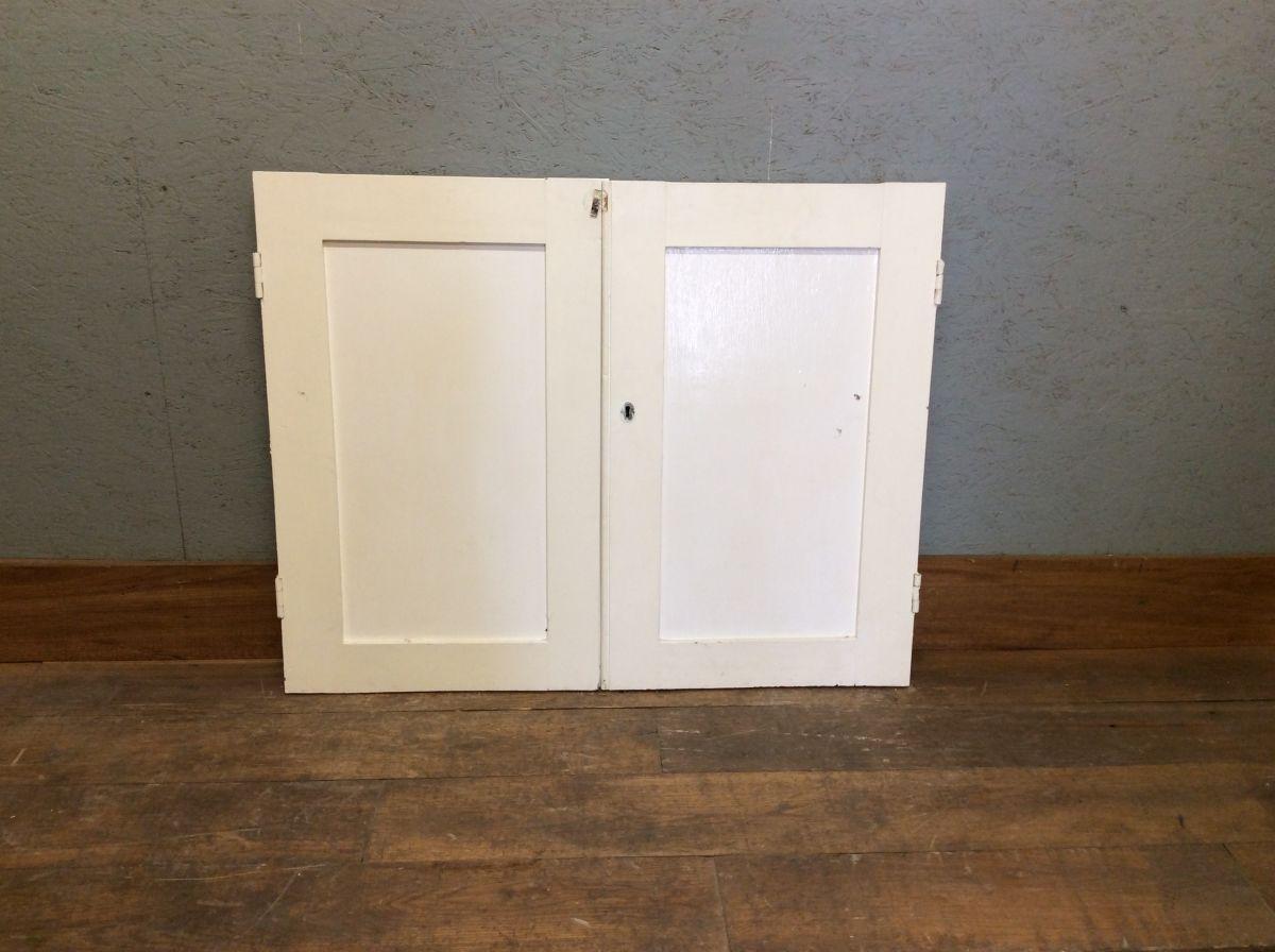 1 Panel Small White Cupboard Door